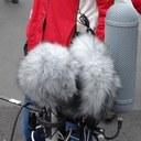 Ambisonics Microfones