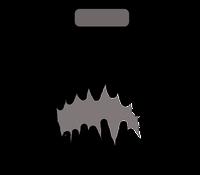 hamp - headphone amplifer  mountable on a portable